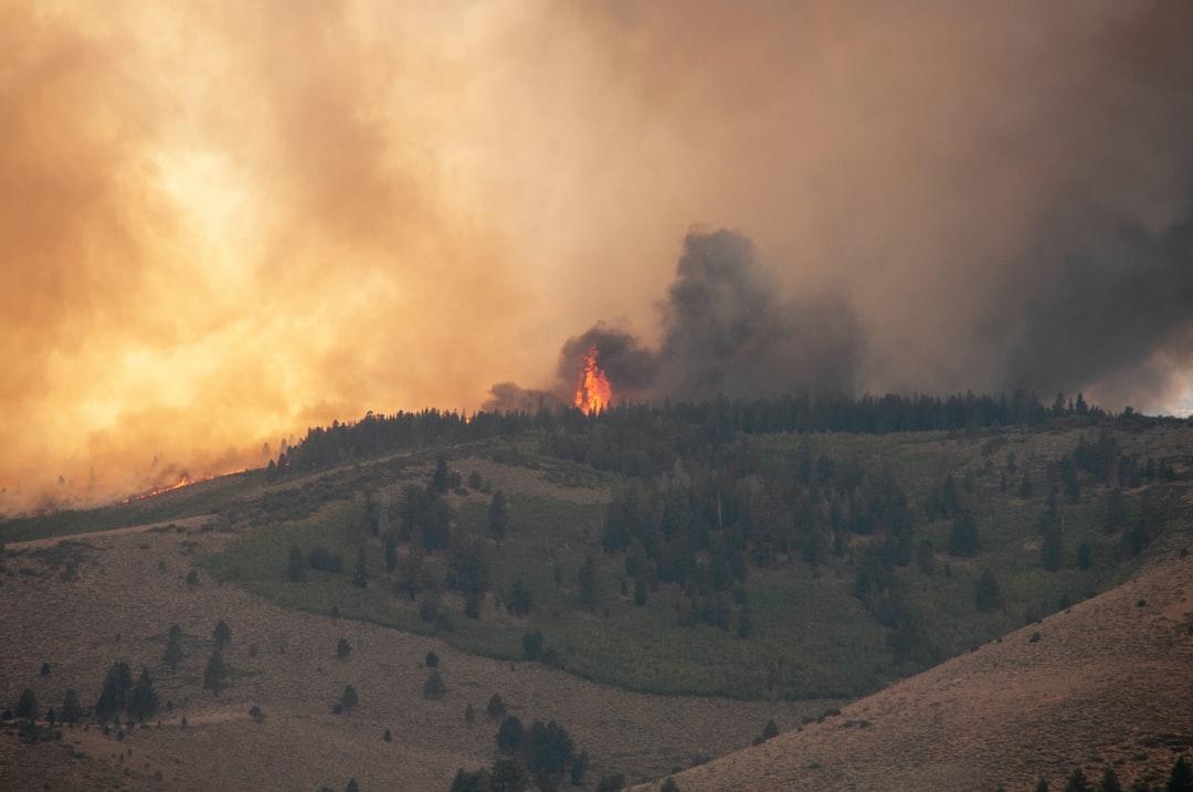 Přes 11 000 vědců z celého světa vyhlašuje klimatickou krizi