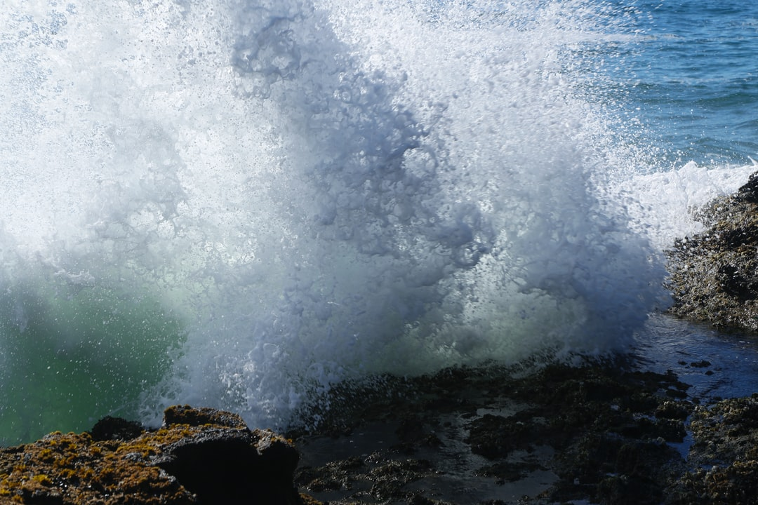 Waves with spray at the Pacific coast, Oregon