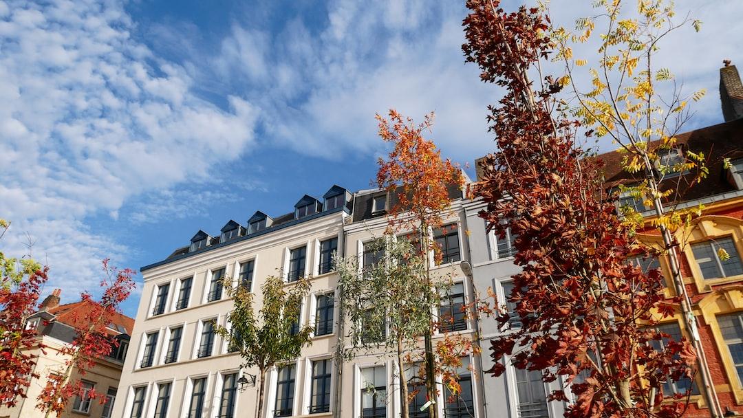 Autumn in Lille