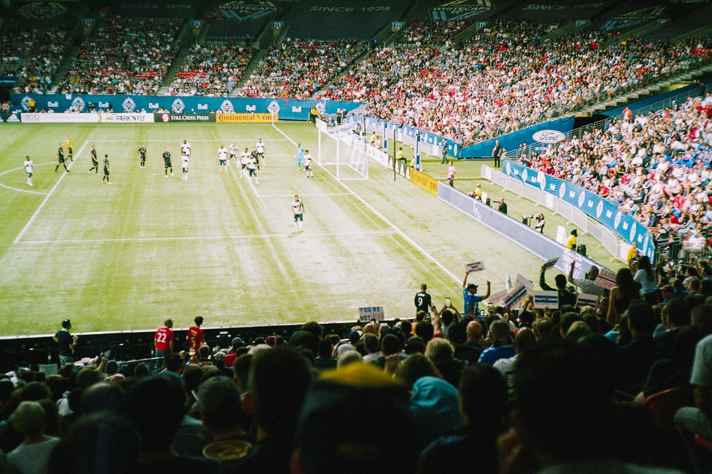 group of people watching soccer games