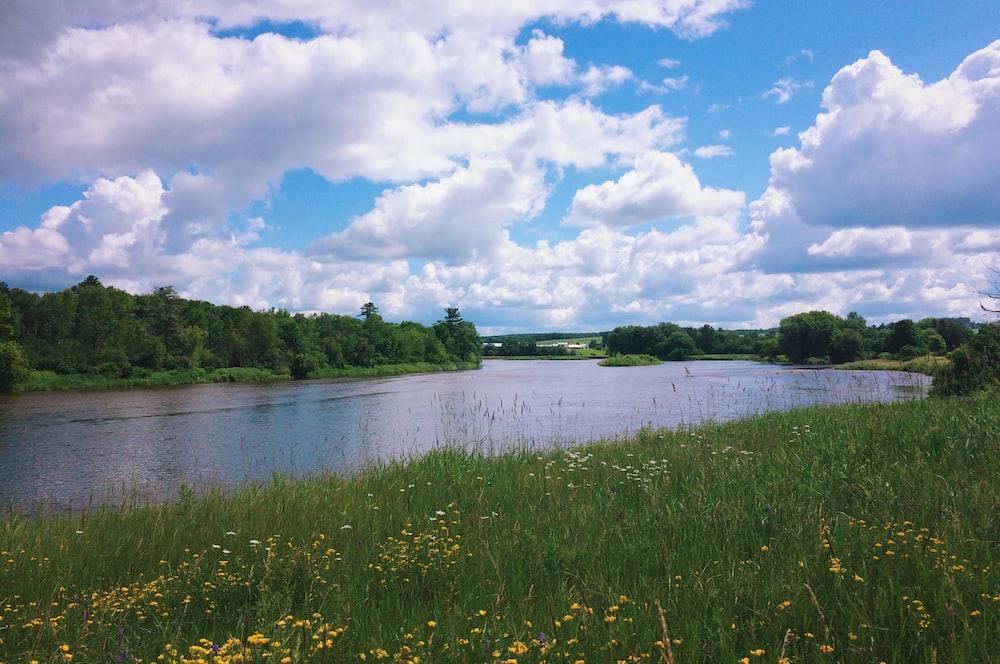 river between green lands under a cloudy sky