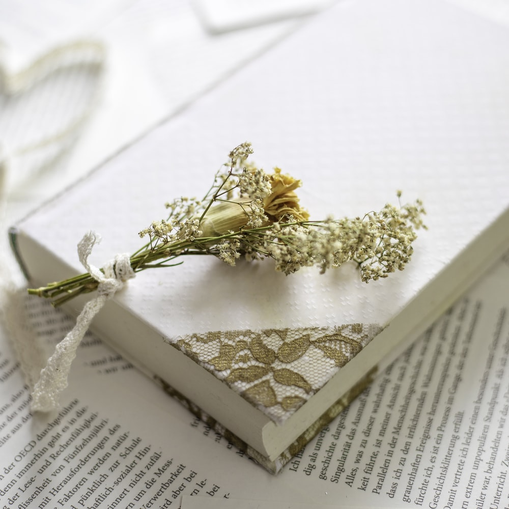 white petaled flower on top of book