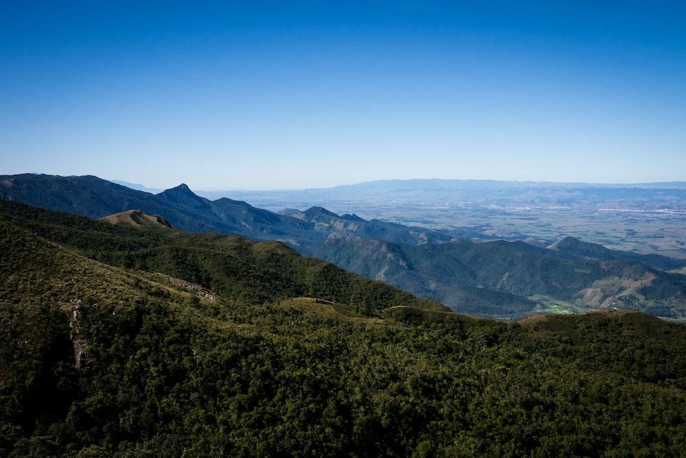 green trees on mountain ranges