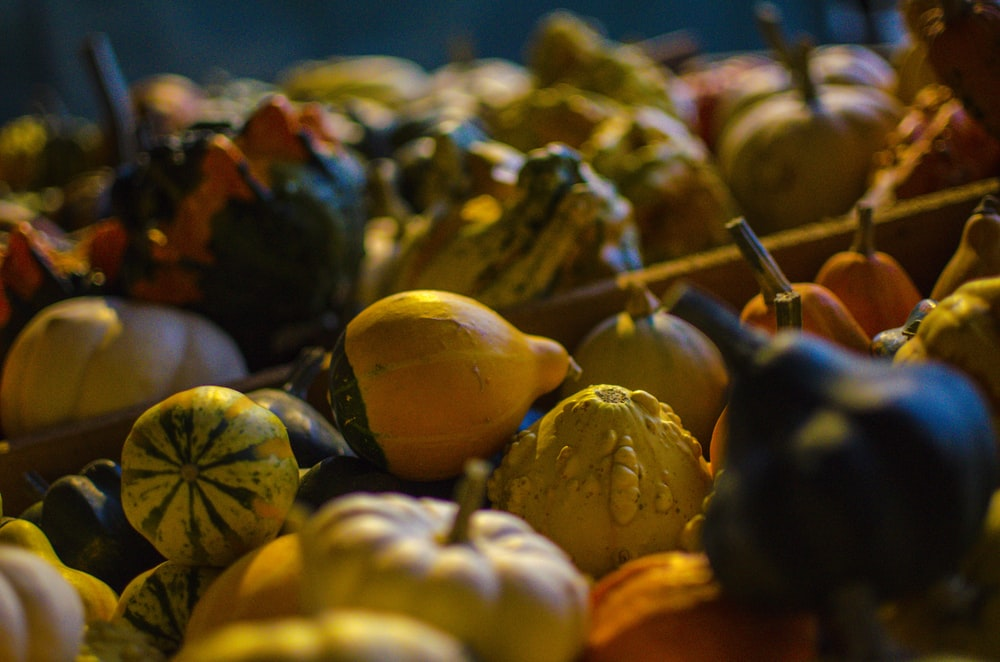 pile of squashes