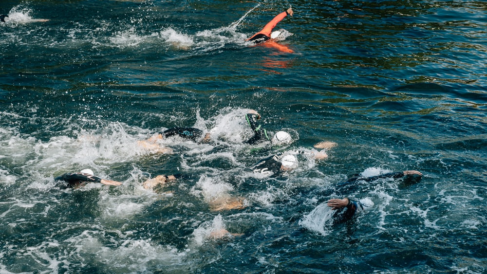 people swimming during day