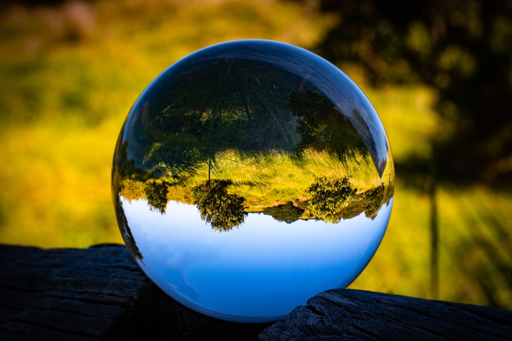 reflection of trees under clear blue sky on clear ball