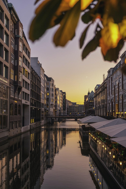 buildings beside waterstream