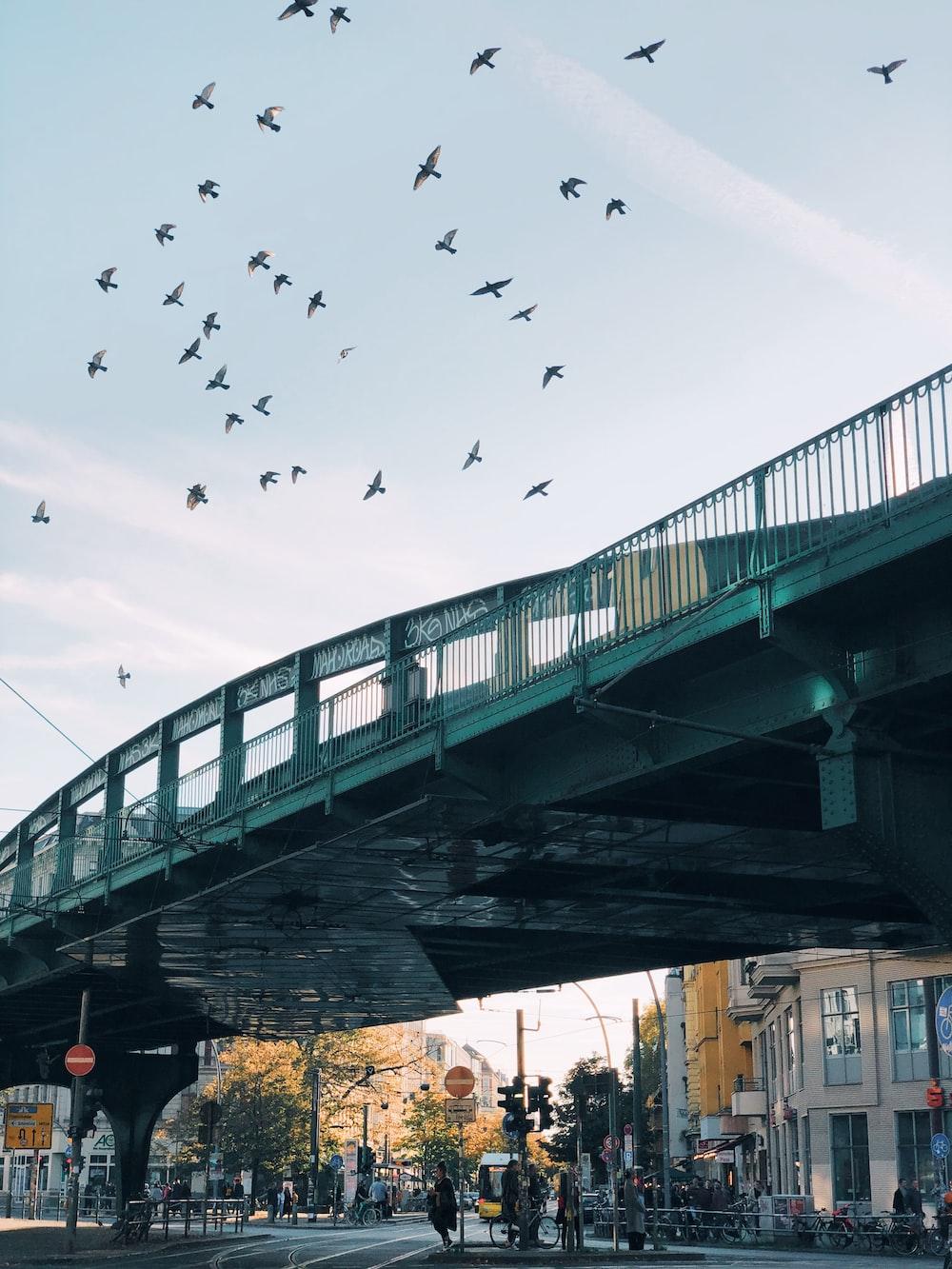 white concrete bridge