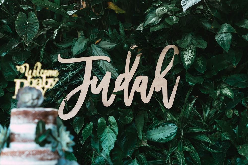 Judah signage on green leafed wall