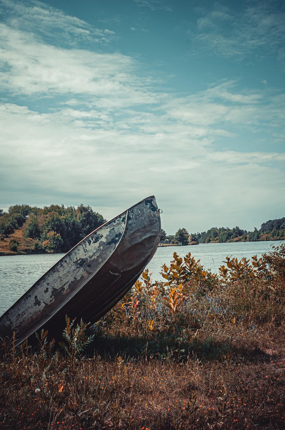 gray jon boat on plants near body of water