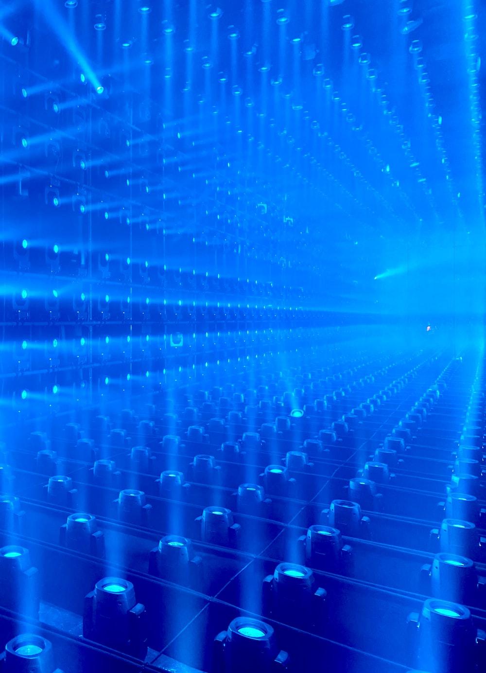 blue halogen lights