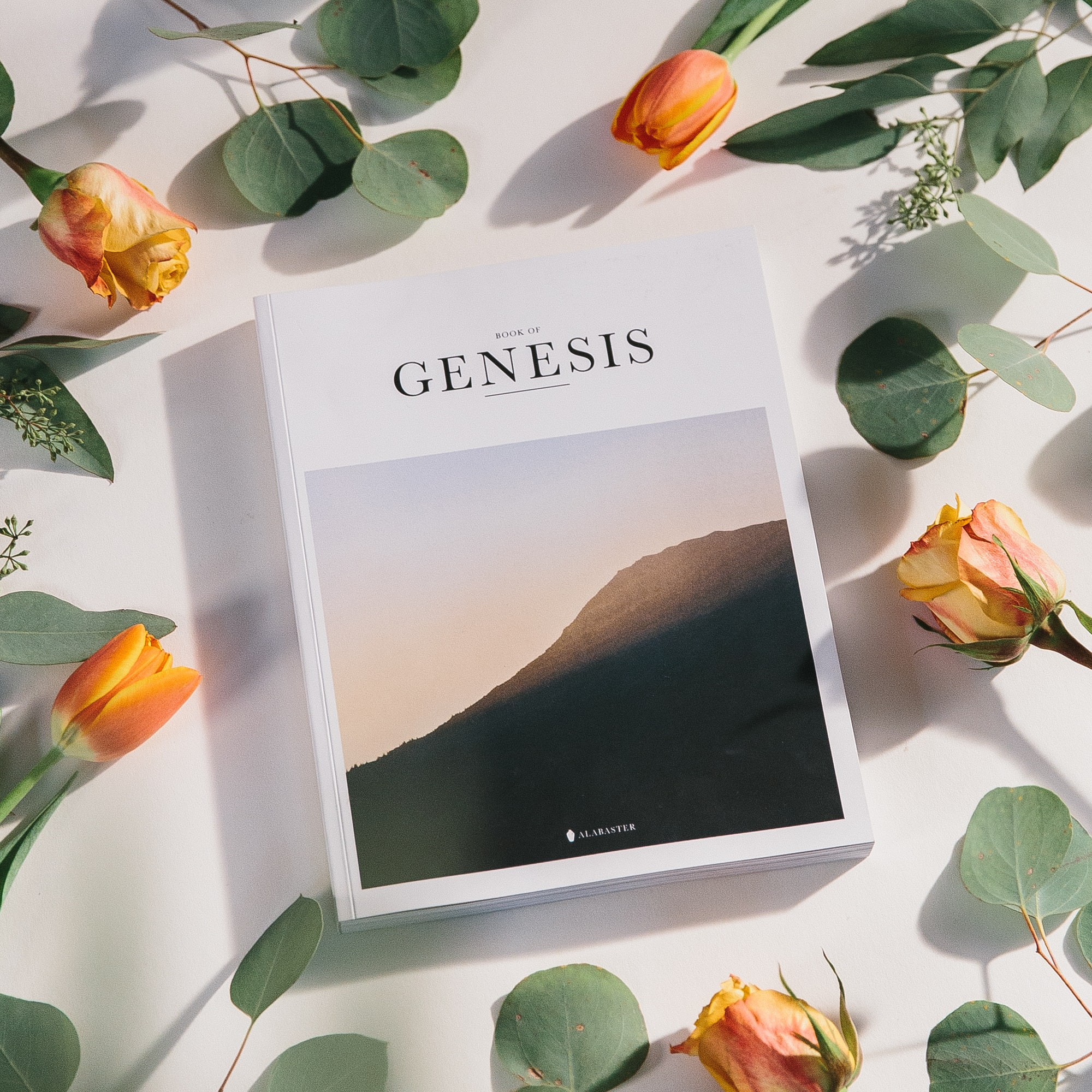 Book of Genesis, Bible with orange roses and leaves on white background table