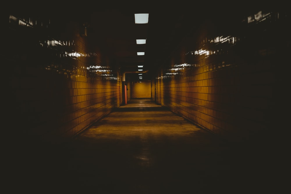 underground road surrounded with lights