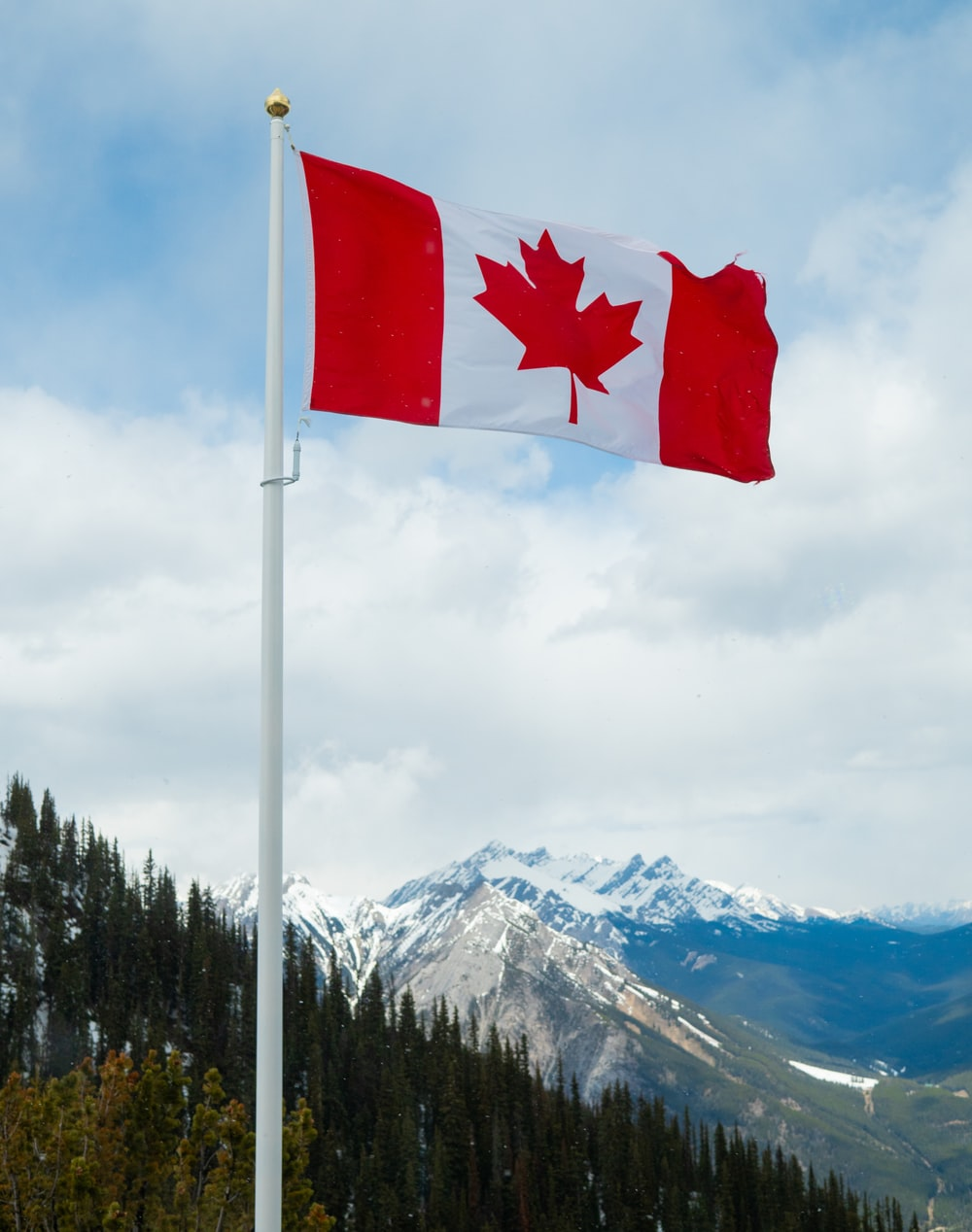 shallow focus photo of Canada flag