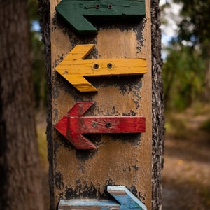 assorted-color arrows