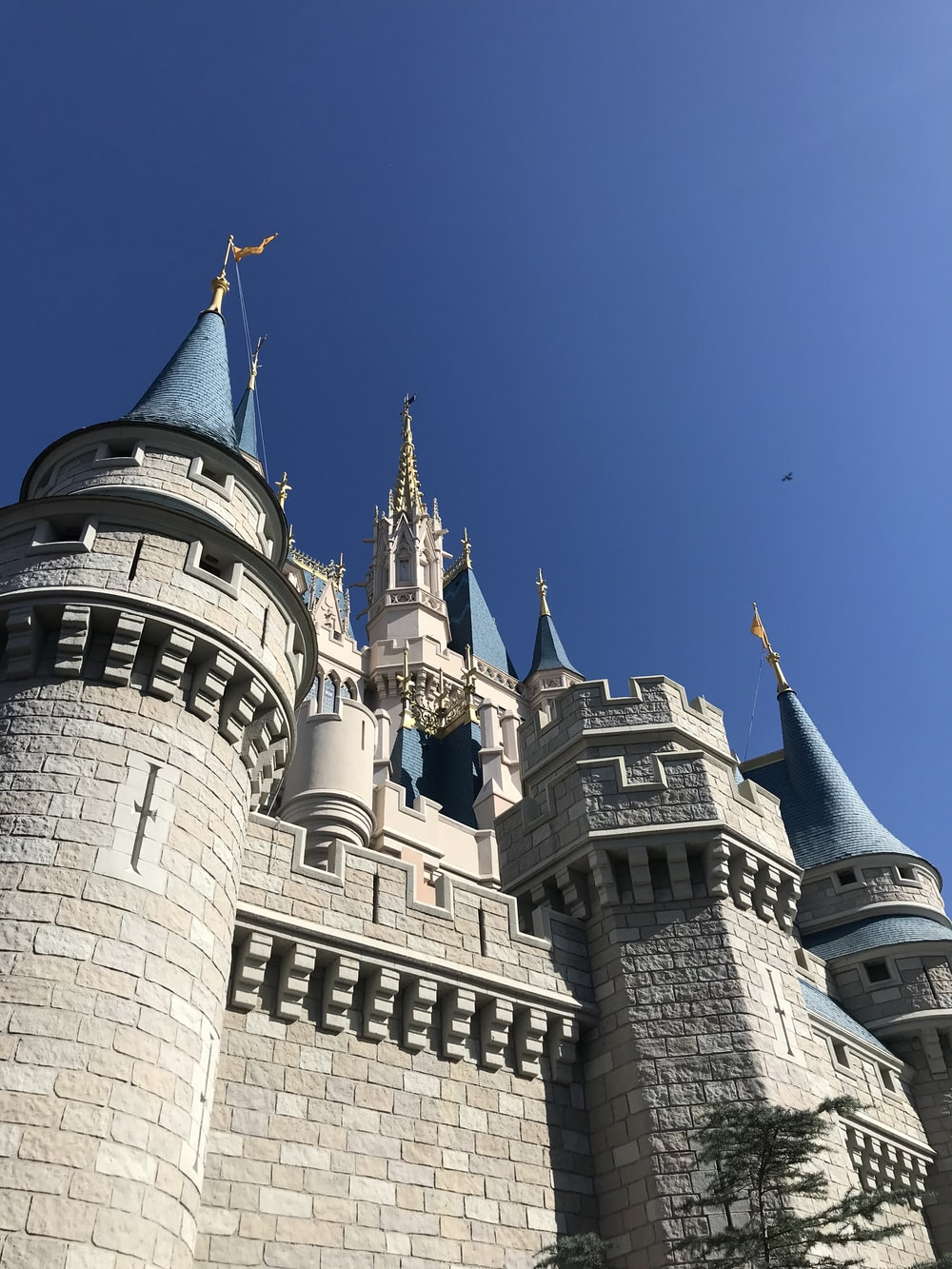 architectural photography of gray and blue castle
