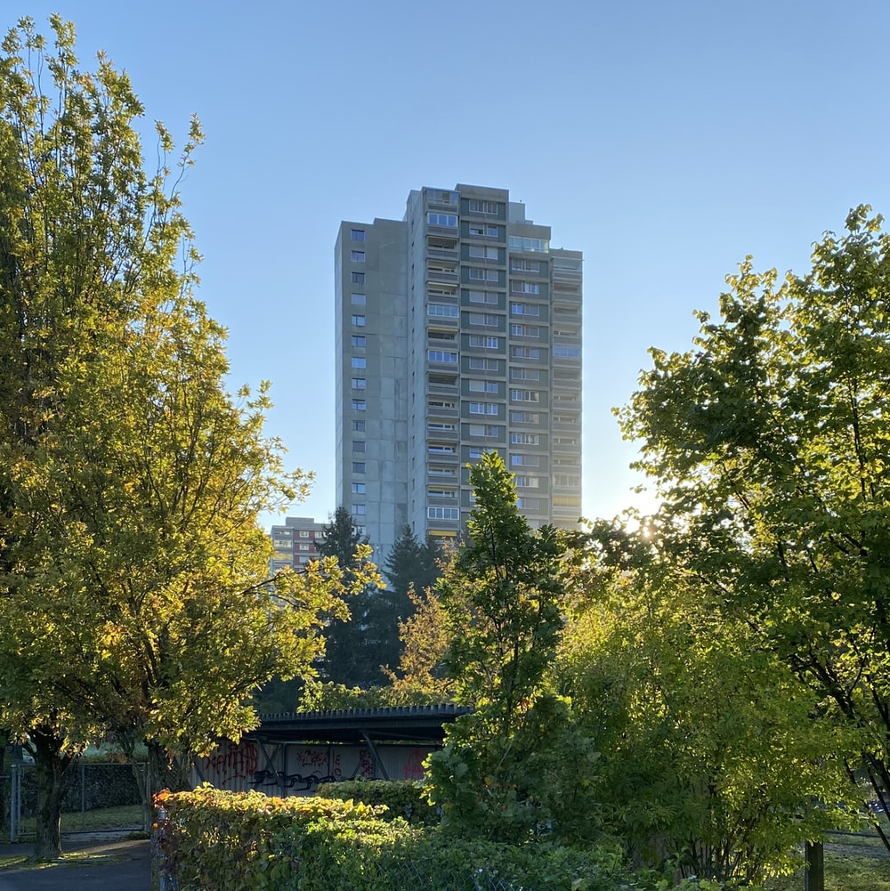 high-rise building near trees at daytime