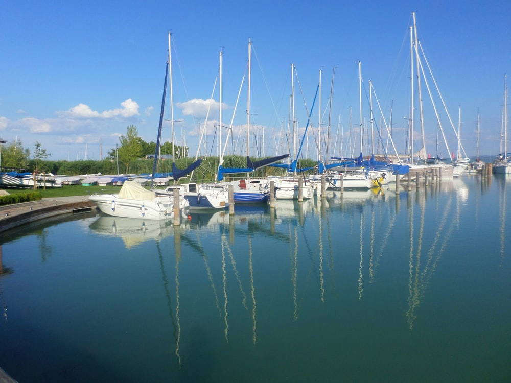 white-and-blue sailboats