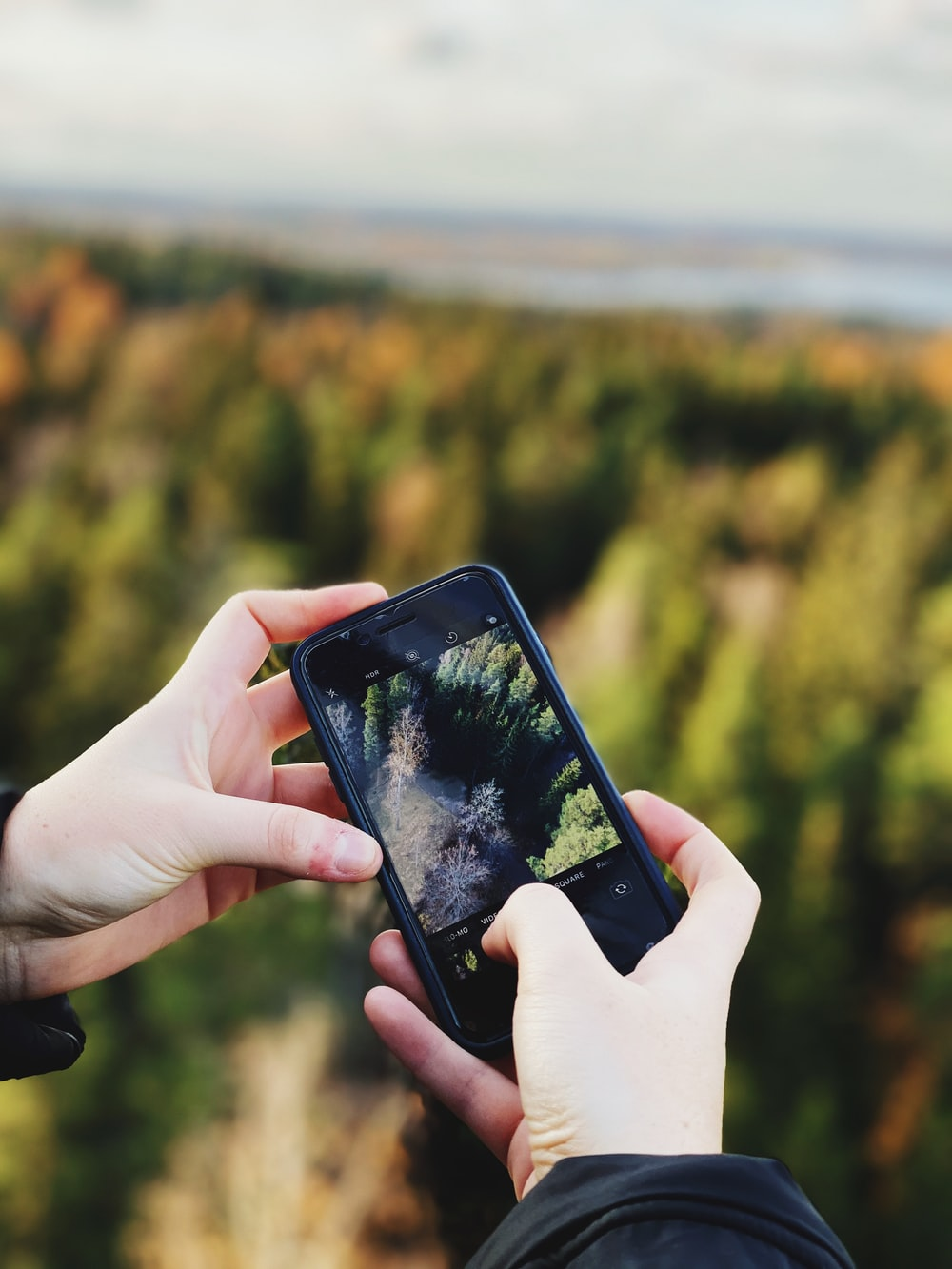 person taking photo of green pine trees using black smartphone