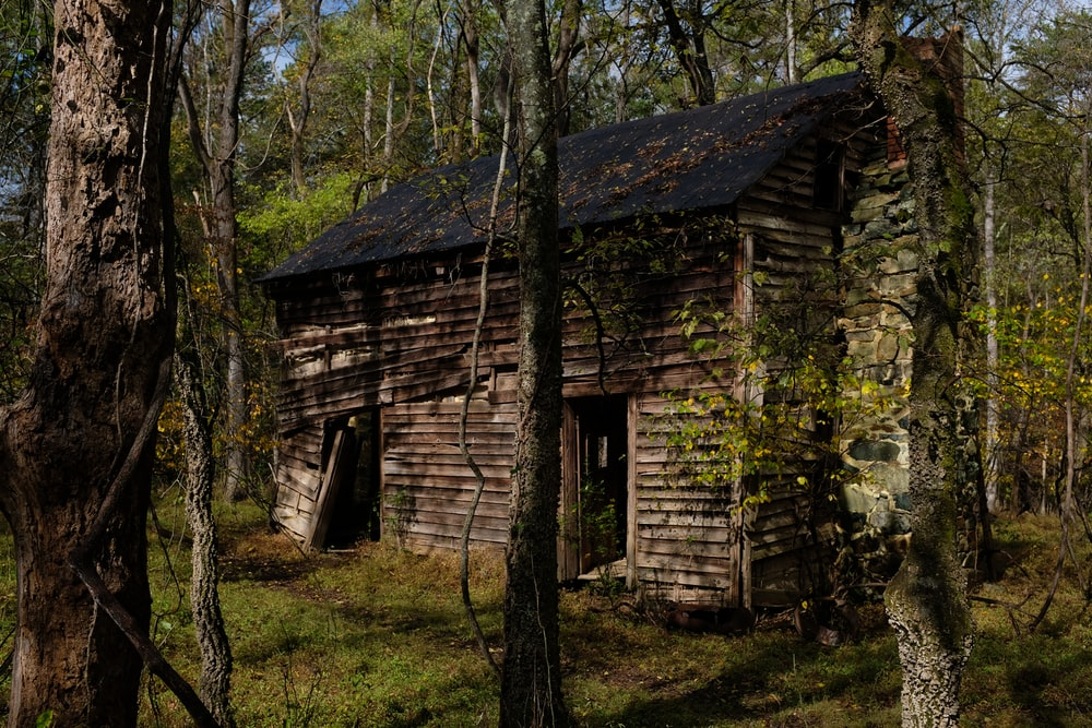 brown and gray cabin