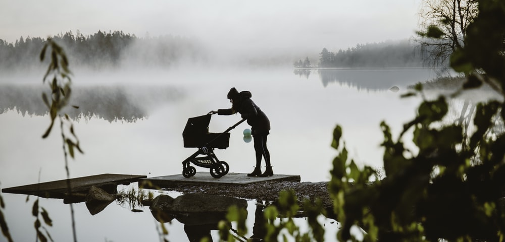 person front of stroller beside lake