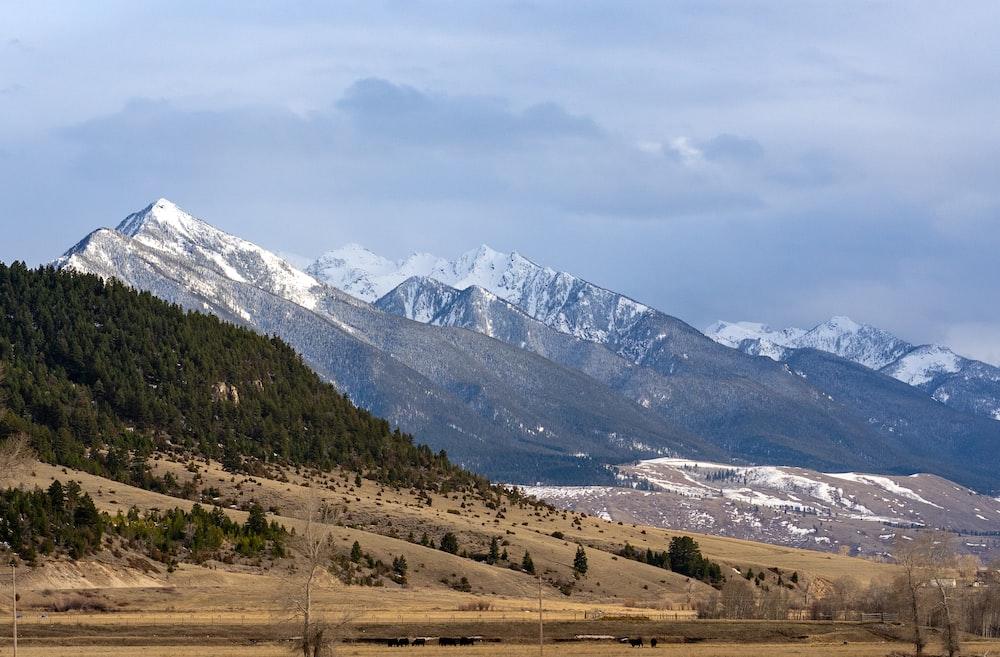 white mountains under gray sky