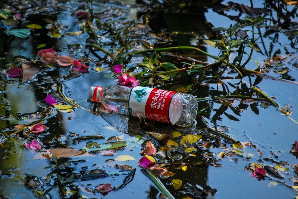bottle on body of water during daytime