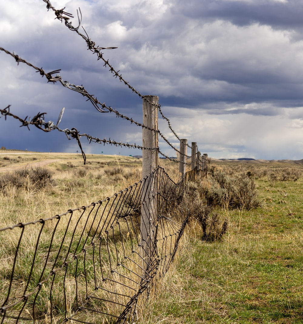 gray metal barb wire on green field under white and blue sky during daytime