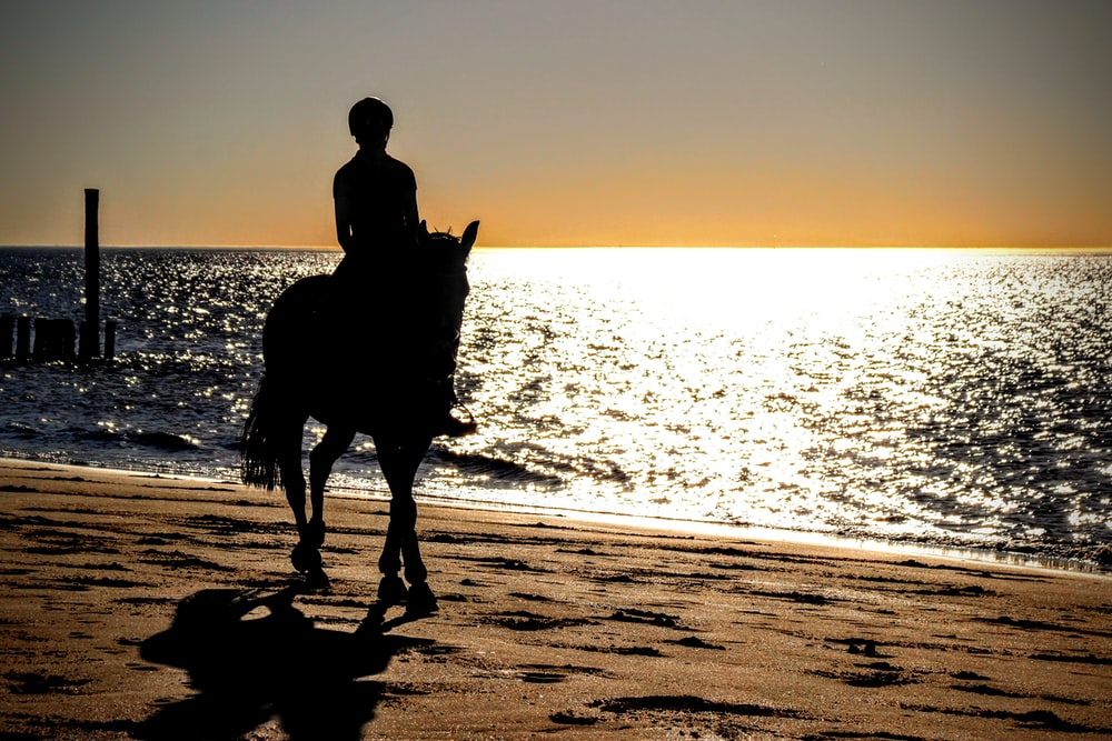 man riding horse on shore during golden hour