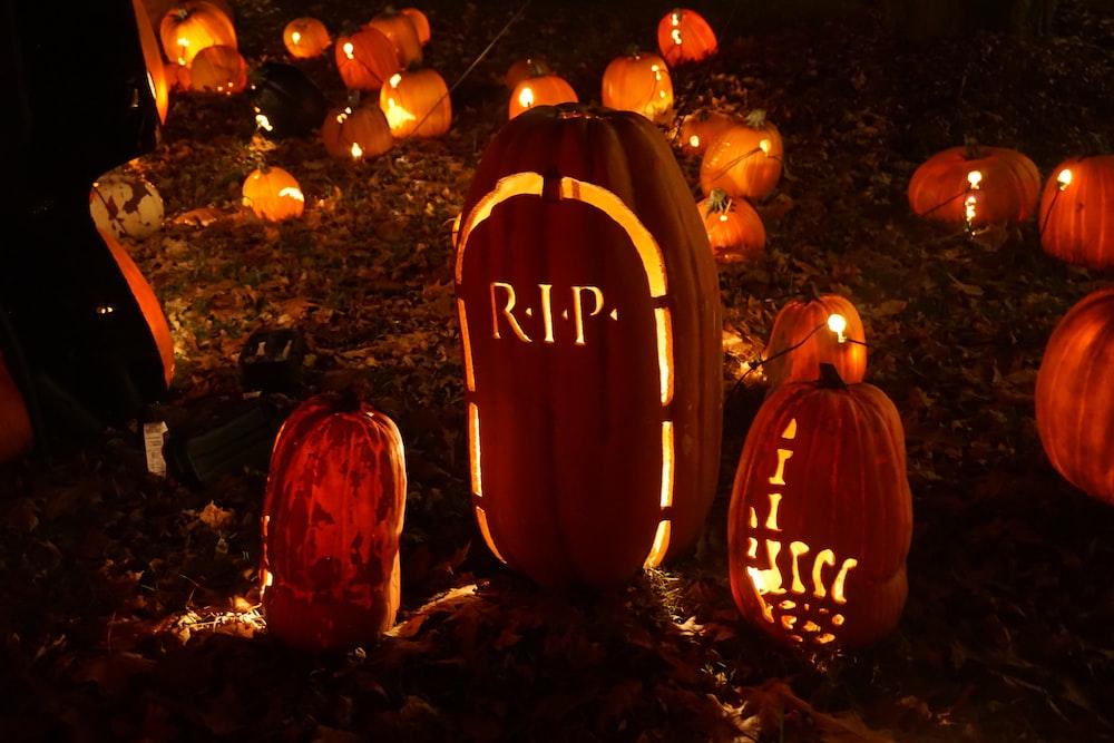 pumpkin squash decor