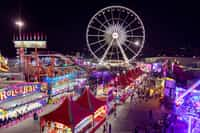 The Carnival in Your Brain carnival stories