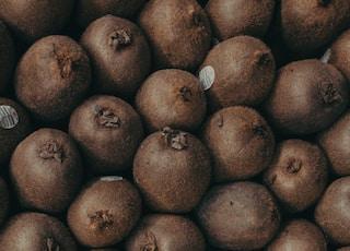 pile of kiwi fruits