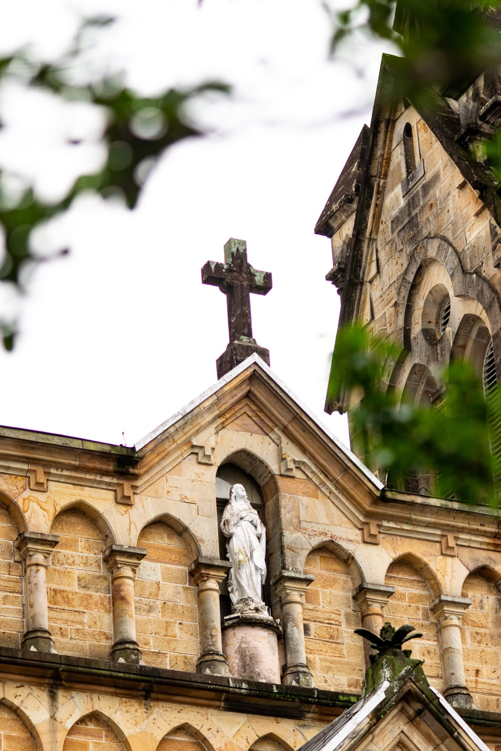 selective focus photo of cathedral