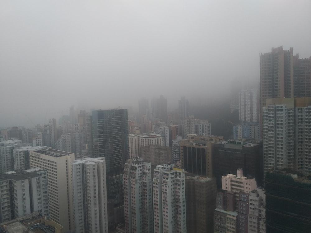 foggy city building scenery