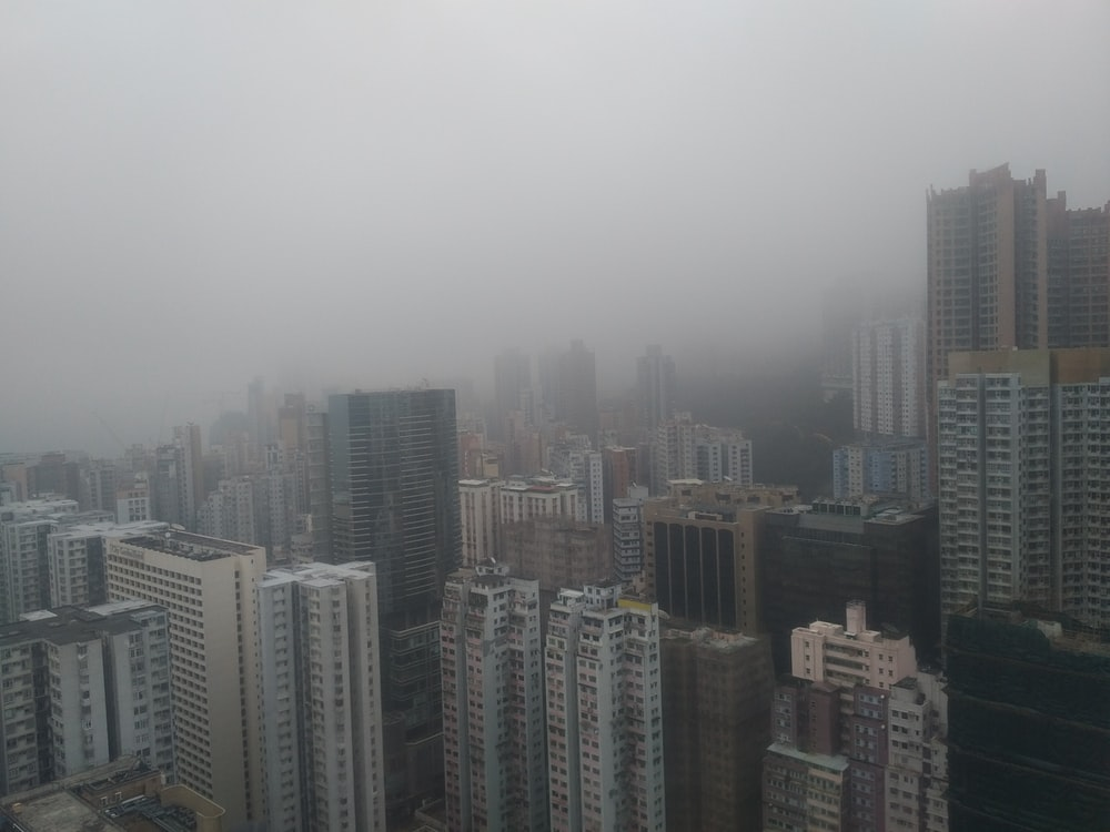 foggy city building scenery