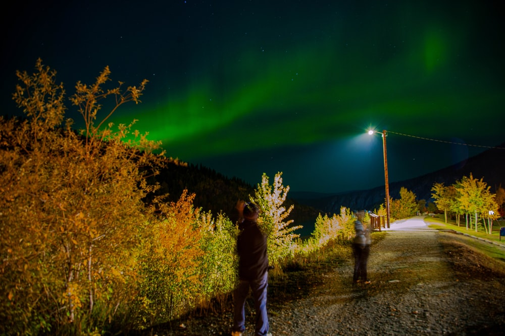 man standing beside plant under borealis