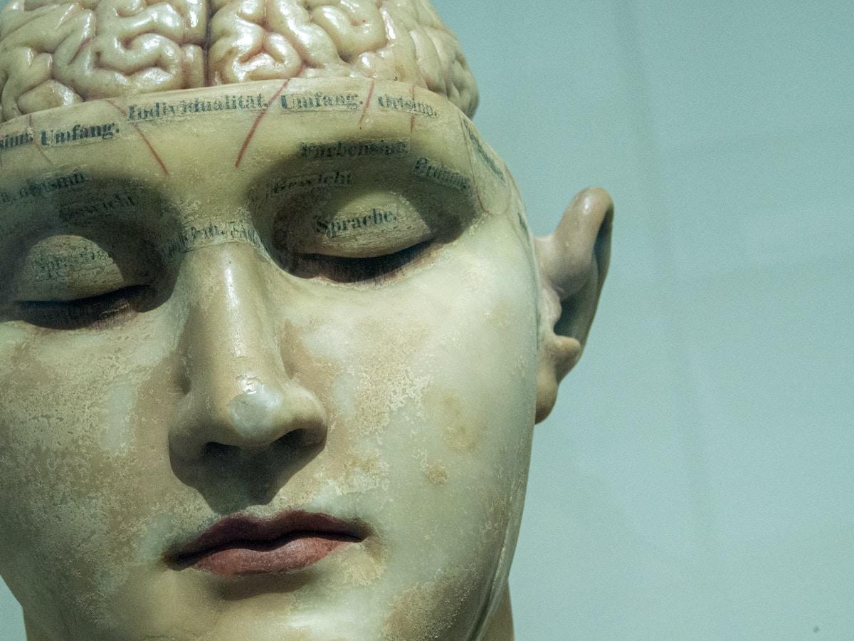 Inteligencia artificial, belleza