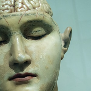 These Mindblowing Theories About Human Consciousness Will Change How You Look At The World