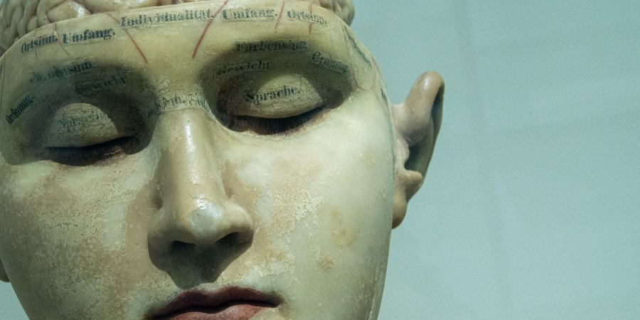 These Mindblowing Theories About Human Consciousness Will Change How You Look At TheWorld