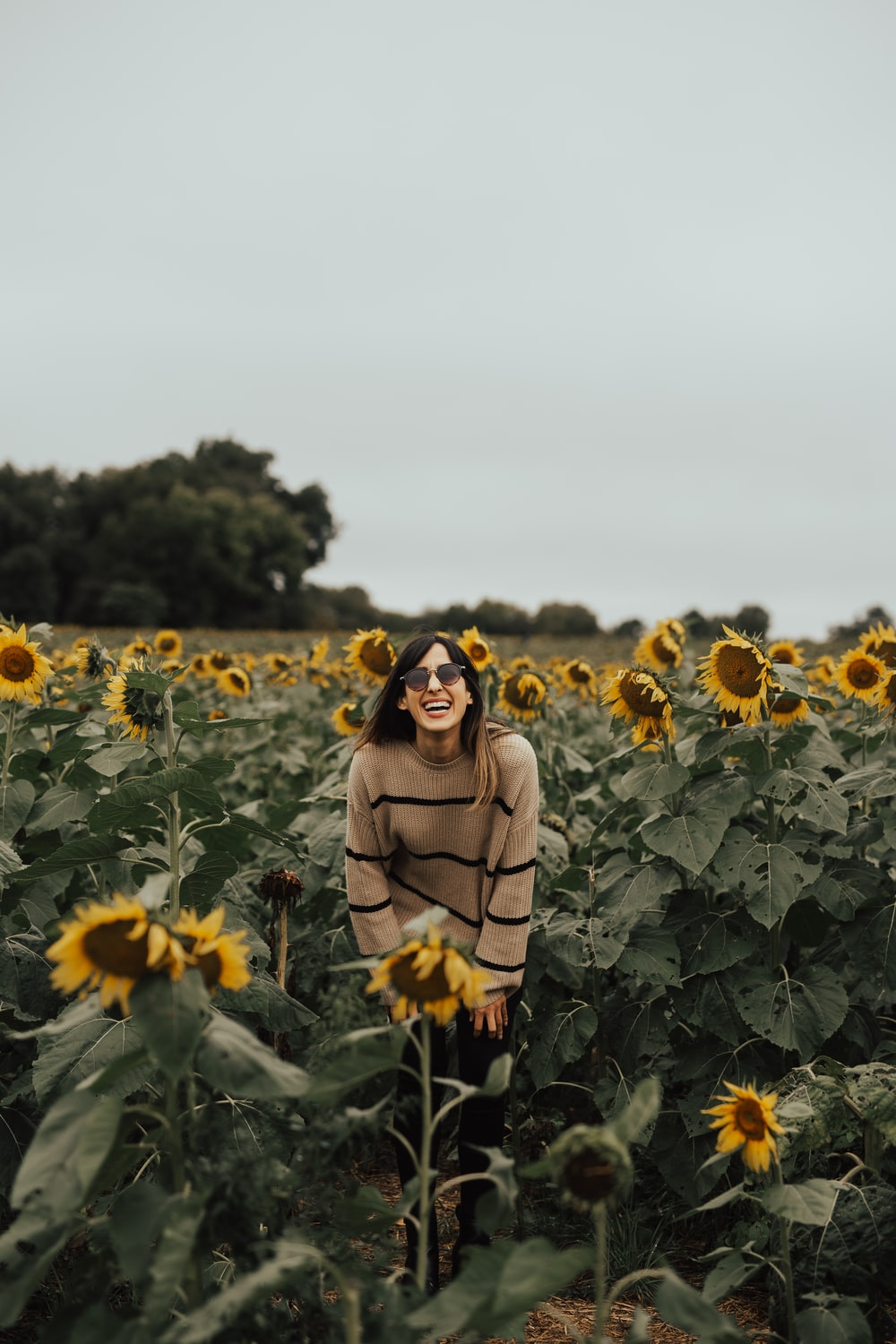 man in black and brown striped sweater standing near sunflower field