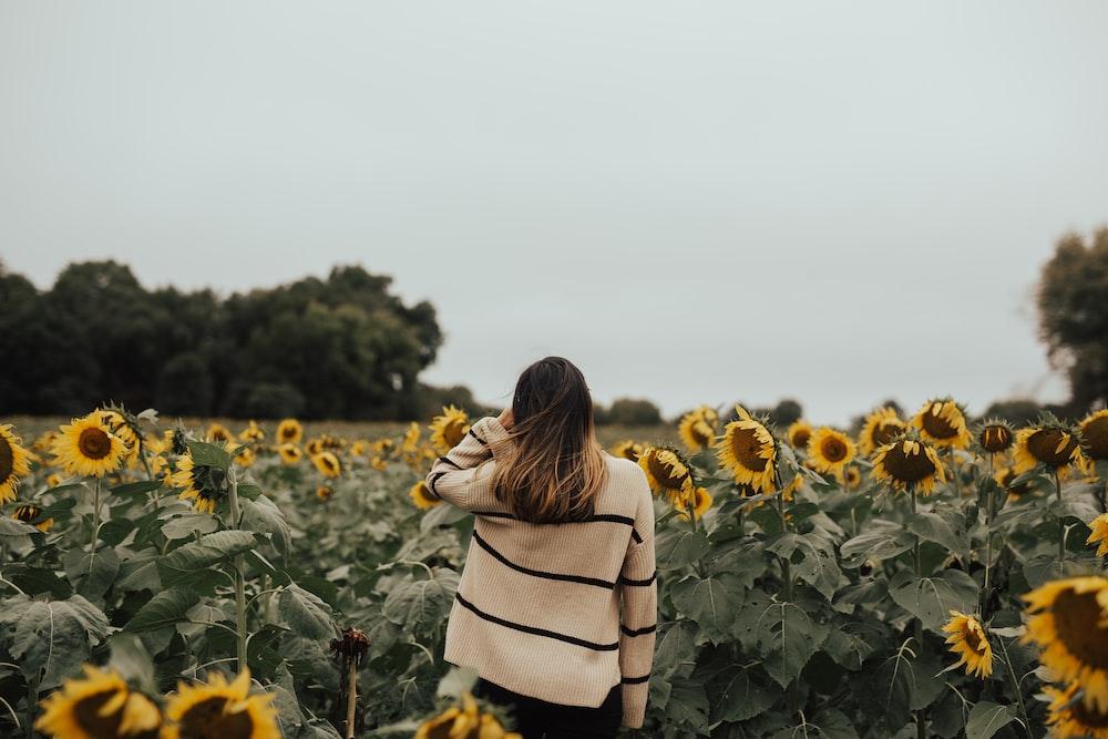 woman standing in sunflowers fields
