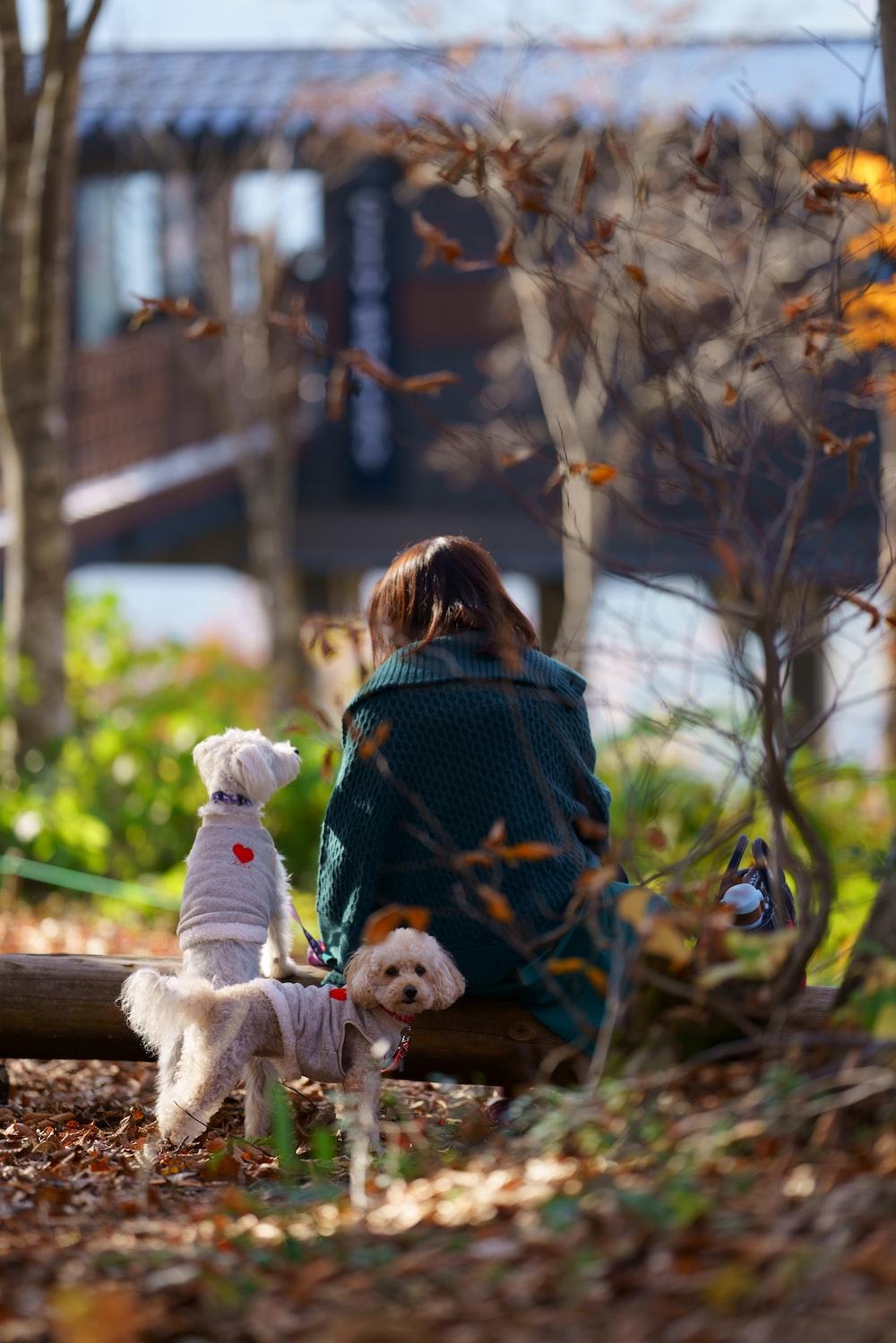 woman sitting beside dogs