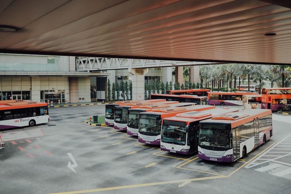orange and white bus lot