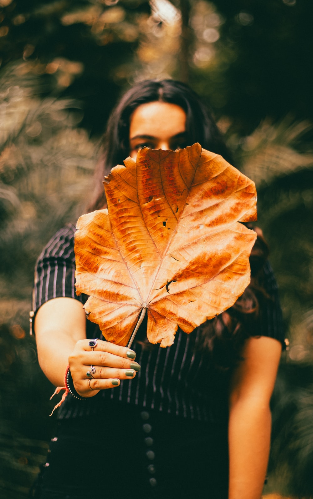 selective focus photography of woman holdin brown leaf