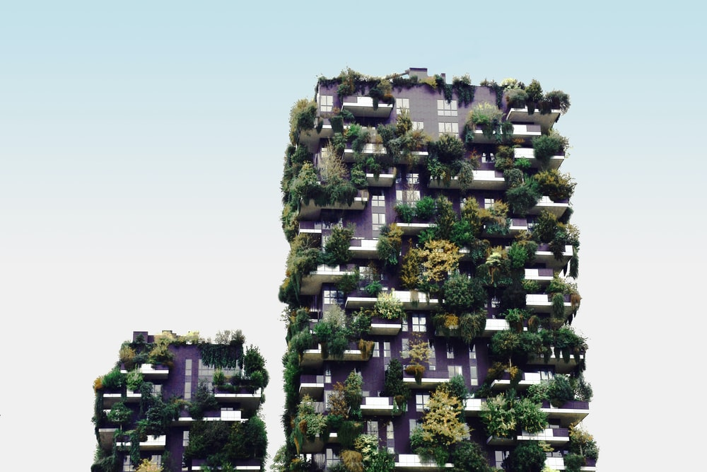 high-rise building with plants
