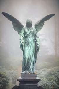 Fallen Angel depression stories