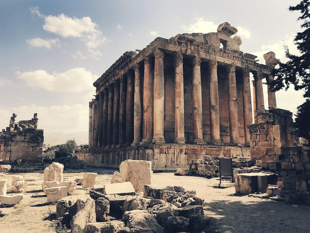 tree near Parthenon