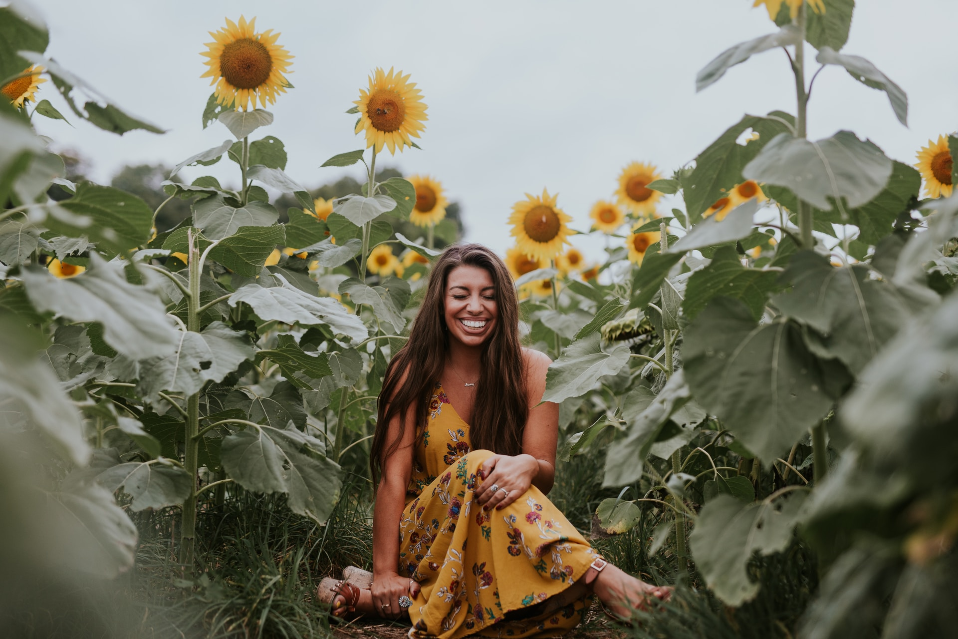 smiling woman sitting on sunflower field