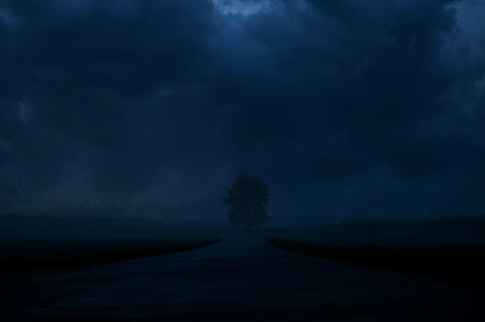 road leading to a tree during nighttime