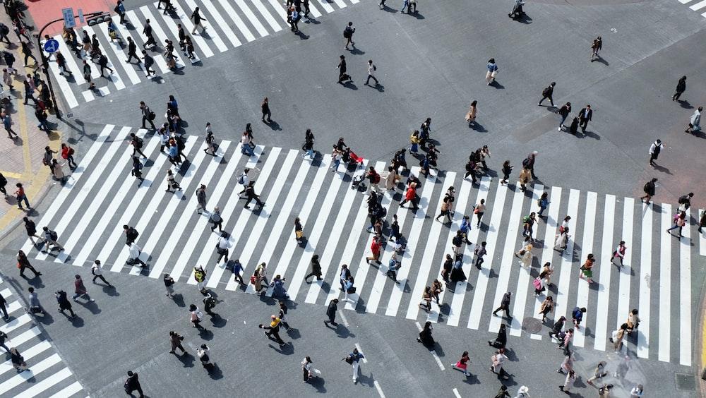 aerial view of people crossing on road